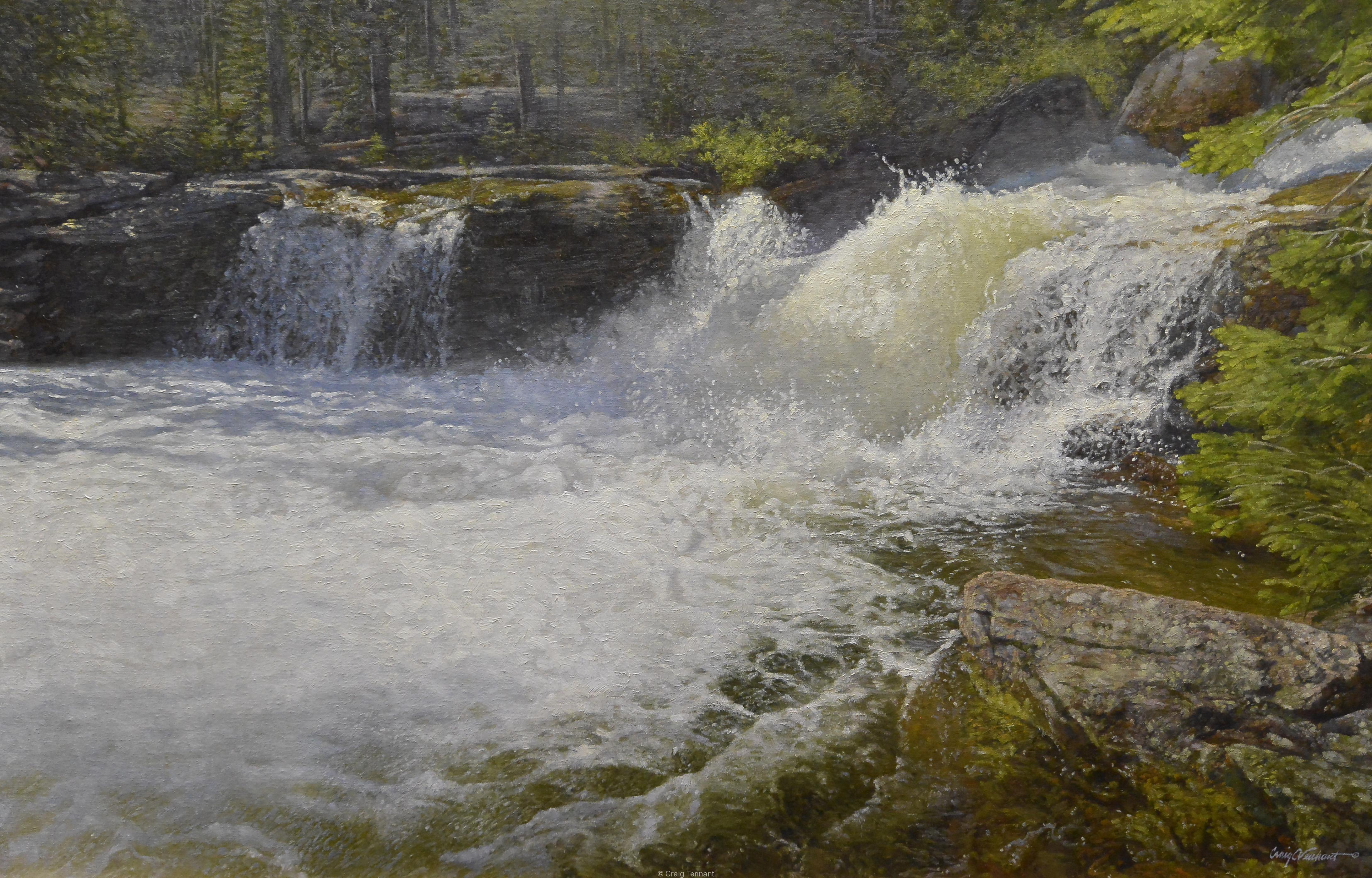 """""""Spring Gusher"""" 26"""" x 40"""" Original Oil Painting on Linen by Craig Tennant Landscape Stream River Water"""